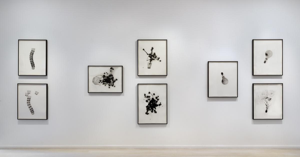 Cornelia Parker | One Day This Glass Will Break | Alan Cristea Gallery